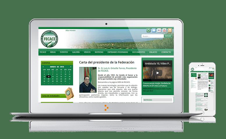 FECACE - Clientes - Ateinco - Consultoría, Outsourcing y Seguridad Informática en Madrid