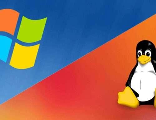 Windows o Linux: qué sistema operativo utilizar